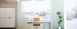 Büro-Pflanzen-Kutlayev Dmitry-Shutterstock.com