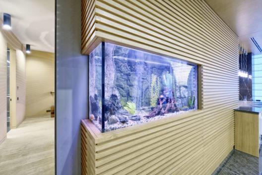 Mit einem Aquarium eine Entspannungsinsel schaffen (Bild: Vadim Ovchinnikov -